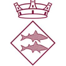Ajuntamente Llica Val Logo